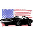 graphic design of an american vector image vector image