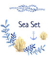 hand drawn watercolor sea set with water plant vector image vector image