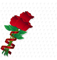 red rose on paper rose background vector image