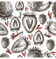 seamless of hand drawn strawberries vector image