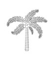 tree palm natural icon vector image