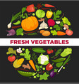 vegetables healthy food poster of organic veggie vector image vector image