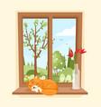 wood window view garden vector image