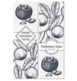 banner set with hand drawn branch vector image vector image
