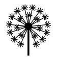 field dandelion icon simple style vector image vector image