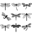 Dragonflies black silhouettes on white background vector image