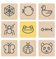nature icons set with spider web fish bone frog vector image