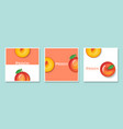 set of fruit banners with peach in paper art style vector image