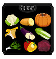 these vegetables vector image