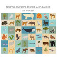 north america flora and fauna flat elements vector image