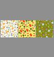 set garden seamless patterns graphics vector image
