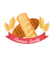 bread premium quality wheat nutrition food vector image