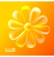 Abstract colorful glass flower vector image