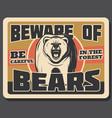 bear animal vintage banner of hunting sport design vector image vector image