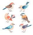 collection cute little folk birds vector image vector image