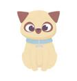 cute dog sitting domestic cartoon animal pets vector image vector image