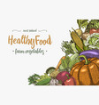 fresh vegetables background with space for text vector image vector image