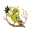 oriental greenfinch vector image