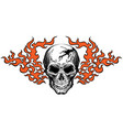 skull in tongues flame vector image vector image