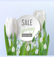 spring sale card with flowers vector image vector image