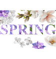 spring text background with flowers vector image