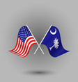 two crossed american and flag of south carolina vector image