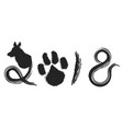 dog year 2018 calligraphy background vector image