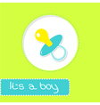 Baby boy pacifier Shower card vector image vector image