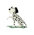 Black And White Dalmatian Dog vector image vector image