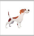 cheerful dog has cracked on a white background vector image vector image