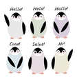 Funny penguins on white background Hello in vector image vector image
