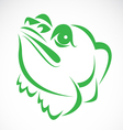 image of an frog vector image vector image