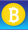 bitcoin digital currency vector image vector image