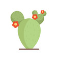 flowers cactus plant traditional mexico icon vector image vector image