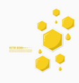 icon honeycomb vector image vector image