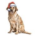 Labrador Retriever 11 vector image vector image
