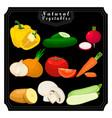 the set vegetables vector image
