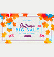 autumn big sale watercolor poster with autum vector image