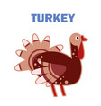 domestic bird turkey isolated vector image vector image