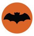 flying bat on white background vector image vector image