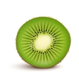 Fresh kiwi fruit Slice vector image vector image