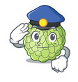police sugar apple fruit isolated on cartoon vector image vector image
