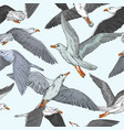 seamless background with hand drawn seagulls vector image