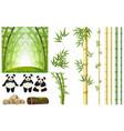 set of panda and bamboo vector image