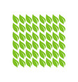 square green leaf pattern shape vector image