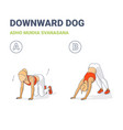 woman doing downward dog home workout exercise vector image
