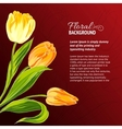 Yellow tulips and text place vector image vector image