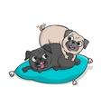 Cute pugs hand drawn cartoon vector image