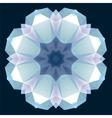 Christmas flower crystal ornament vector image