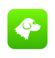 beagle dog icon digital green vector image vector image